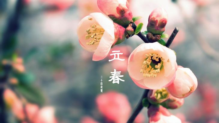 初五的今天,也是今年第一个节气——立春!