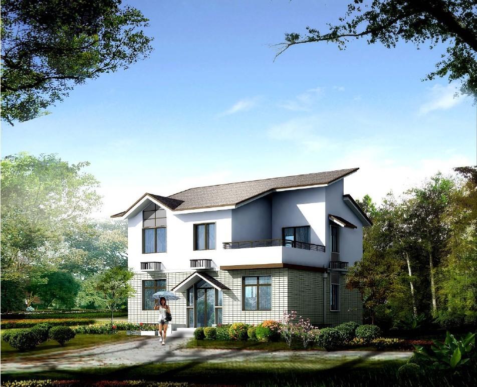 3层半别墅设计图10米 8米