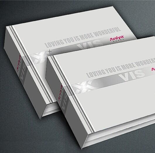 企业vis形象设计 vi手册设计