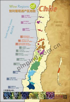 智利产区名庄香气地图