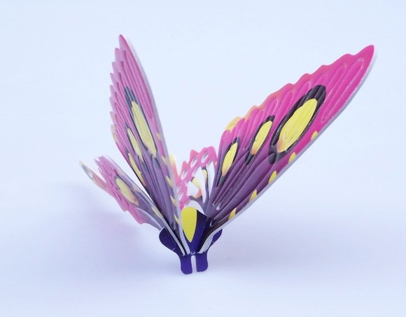 创意科学小发明科技小制作科普实验diy材料益智玩具认知昆虫