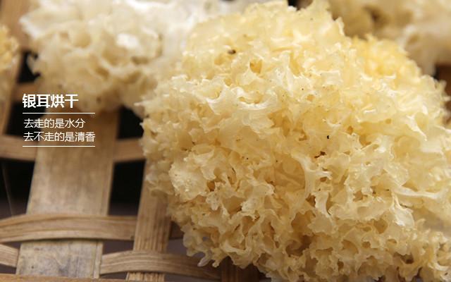 裕德源通江银耳采用青杠残木加热气流传统烘干,烘干的银耳成米