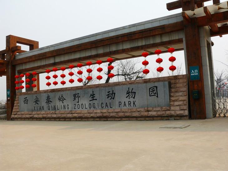 陕西省西安市长安区滦镇 开放时间:09:00-17:30 西安秦岭野生动物园