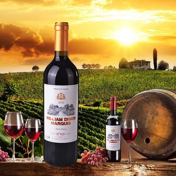 帝森侯爵干红葡萄酒 法国进口红酒