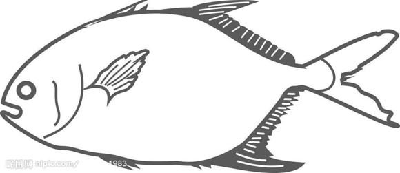 海鱼简笔画步骤