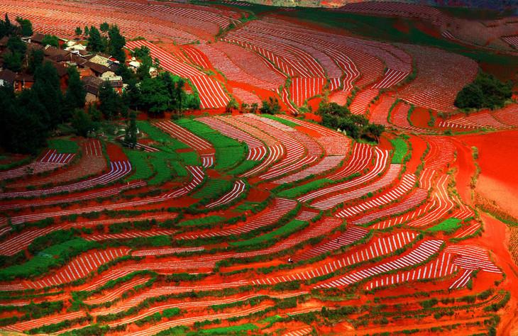 云南东川红土地被专家认为是全世界除巴西里约热内卢外最有气势的红土