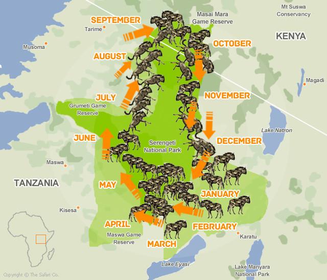 角马迁徙时间路线图