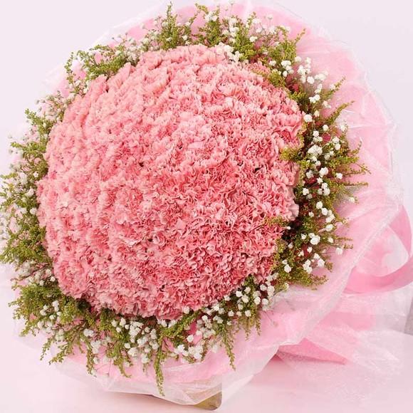 99枝粉色康乃馨,搭配满天星黄莹,寓意:把我心中无限的祝福随着花朵