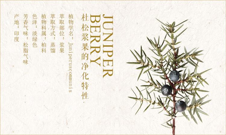 杜松浆果juniper berry