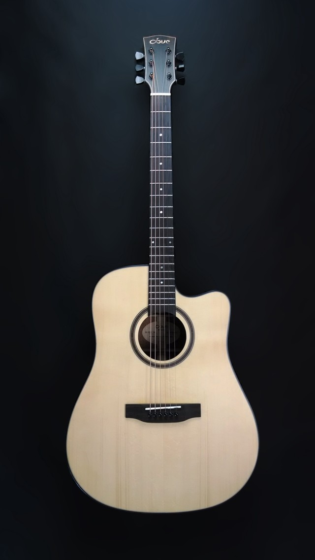 dove dd-220s 面单吉他