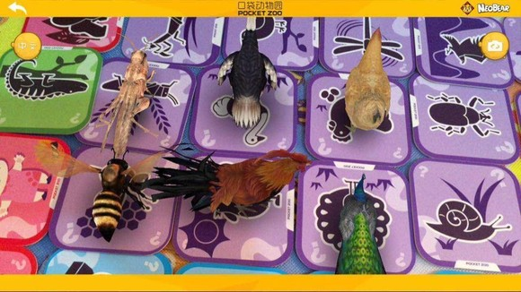 【小熊尼奥口袋动物园】3d立体儿童早教宝宝看图
