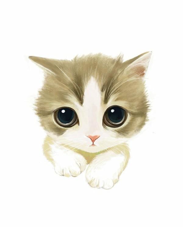 壁纸 动物 猫 猫咪 小猫 桌面 600_745 竖版 竖屏 手机
