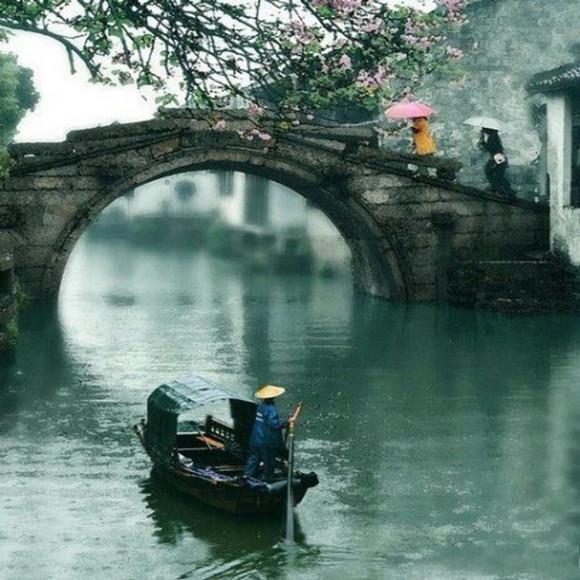 南京杭州上海 黄山 西递屏山 千湖岛,水乡乌镇八日游