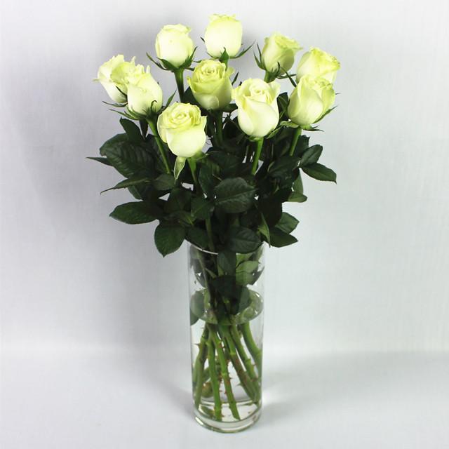 微信头像 2016 花朵 玫瑰