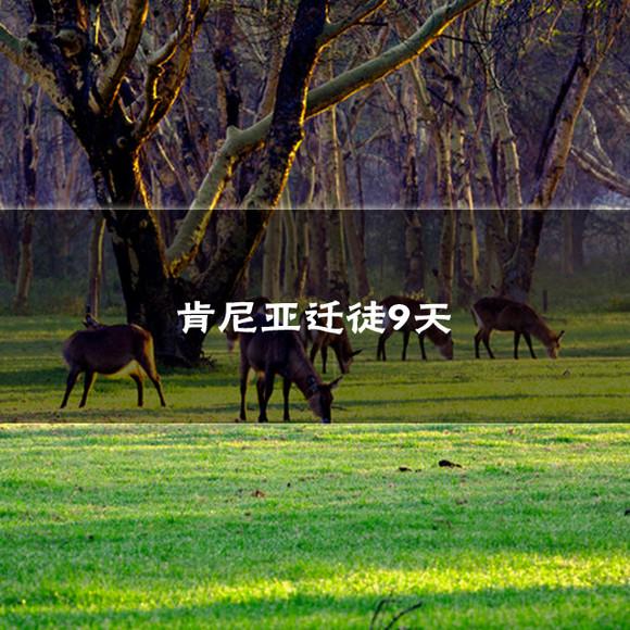 也是野生哺乳ag游戏直营网|平台的生命线;在这里