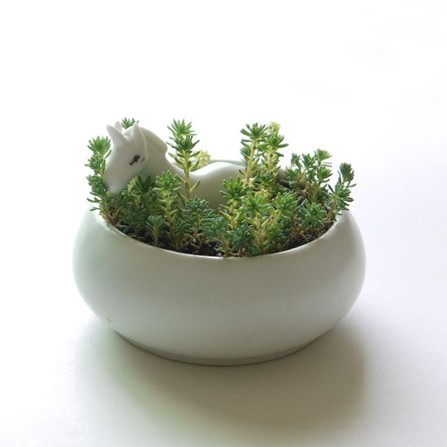 请注意:所售花盆不包含多肉和苔藓手工制品,大小存在细微差异,小动物