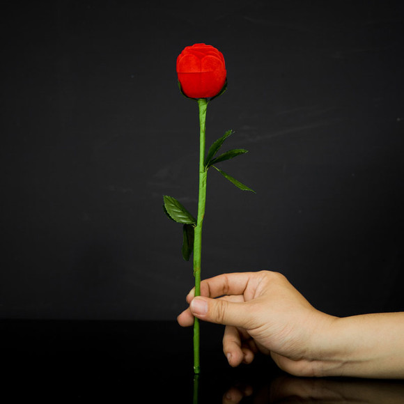 近景魔术道具 玫瑰花变戒指盒 浪漫之约 求婚 魔术花