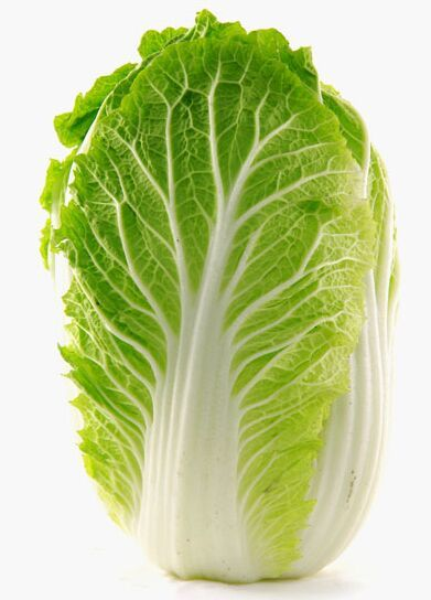 盐制5分钟左右 (这样肉丝吃起来会更嫩且很鲜); 2,将白菜的茎,叶分开