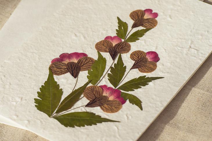 泰国手工纸植物卡片/明信片