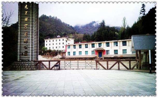 陕西旅游 西安景点门票 商洛木王国家森林公园