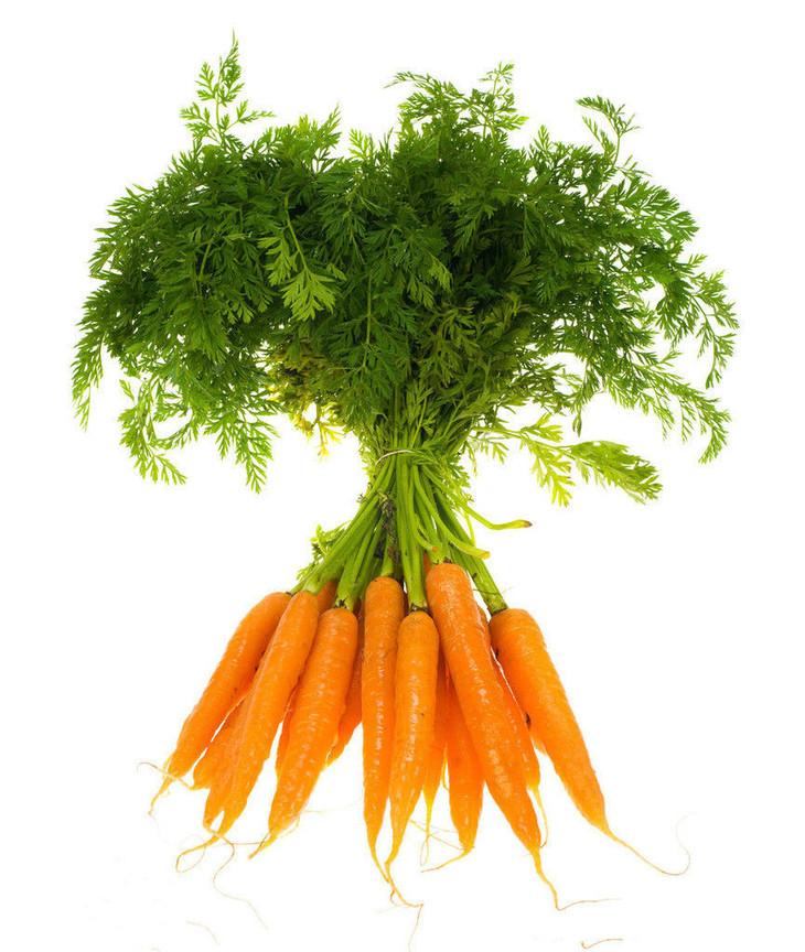 """胡萝卜又称""""小人参""""含有丰富的维生素a"""