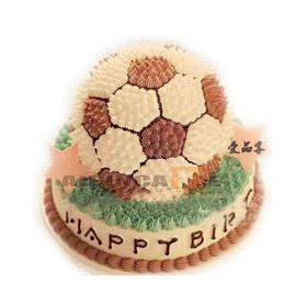 双层足球蛋糕|青春律动图片