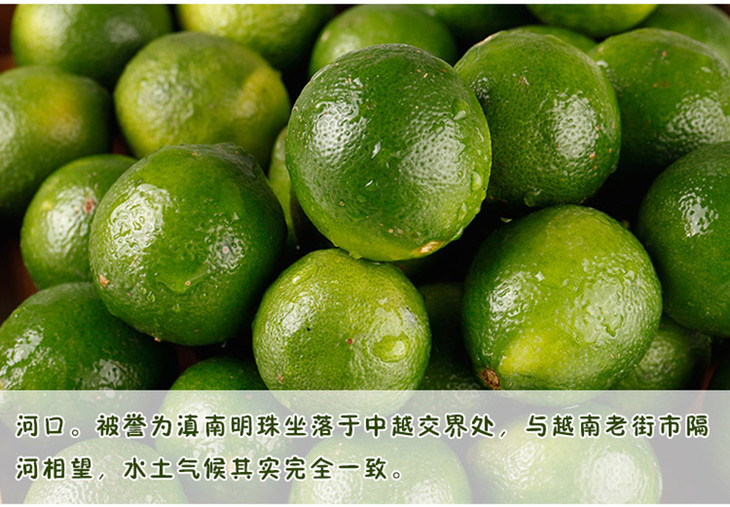 青�9/&�b�K��X��R��S����_越南进口新鲜皮薄多汁青柠檬 现摘现卖 包邮