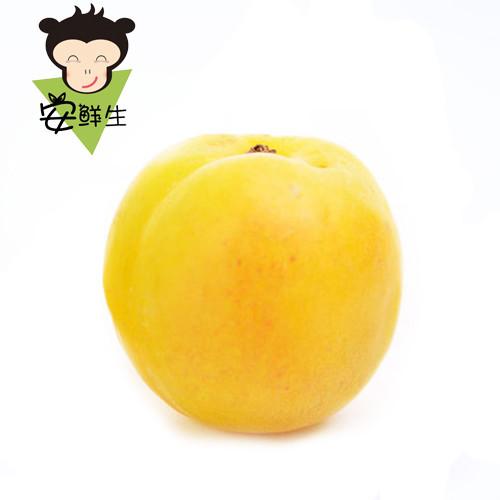 新疆水果矢量图