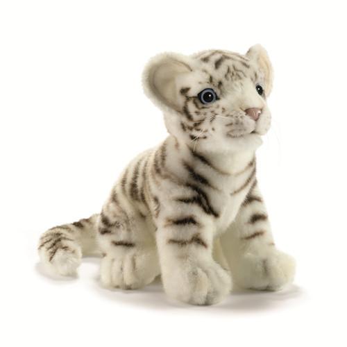 壁纸 动物 虎 老虎 猫 猫咪 小猫 桌面 500_500