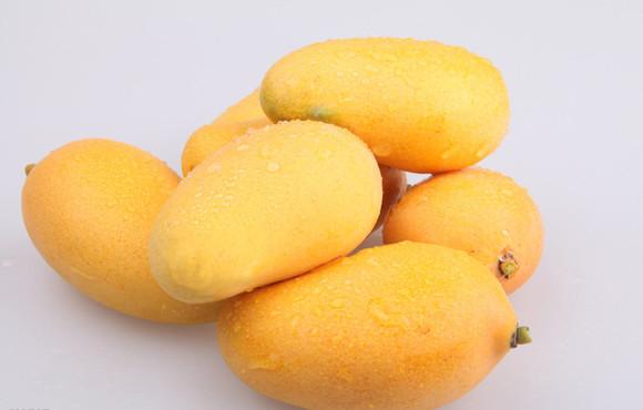 广西小台农芒果 限量50份 预购从速