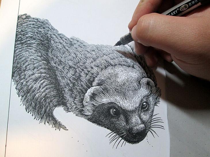 世界上哺乳动物中最凶猛的咬人动物是蜜獾