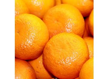 水果桔子微信头像