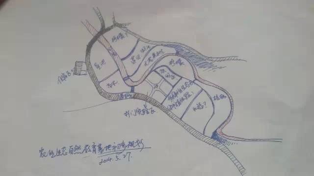 莲蓬素描画法步骤图