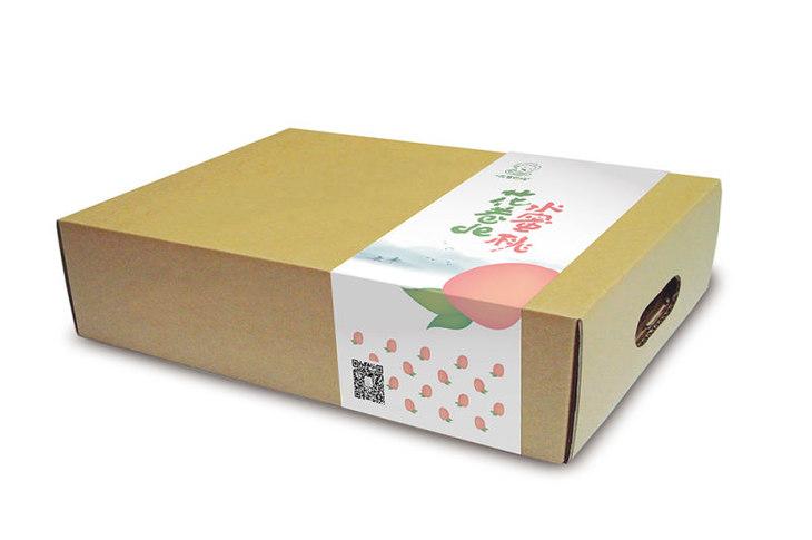 包装 包装设计 设计 730_485