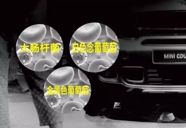 汽车空调清洗套装杀菌效果检测报告