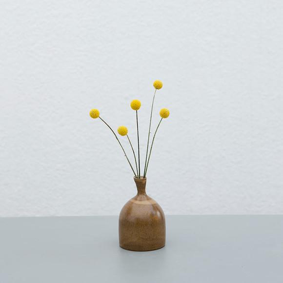 极致逼格「高冷花材组」,尤加利叶若干 尤加利果若干图片